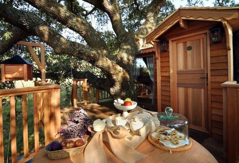 Dormire su una casa sull'albero